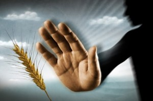 hands against wheat