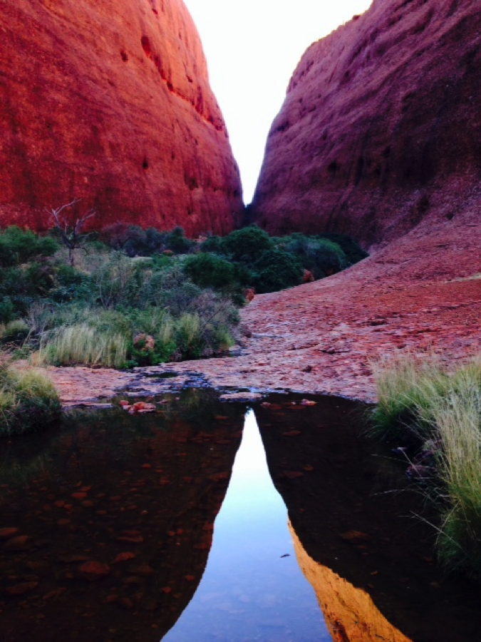 Canyon at Kata Tjuta