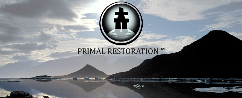 Primal fat burner paleo or ketogenic clarifying the similarities find out how to restore your primal birthright with the primal restoration certification course malvernweather Choice Image